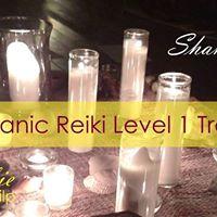 Shamanic Reiki Level 1 with Debbie Philp