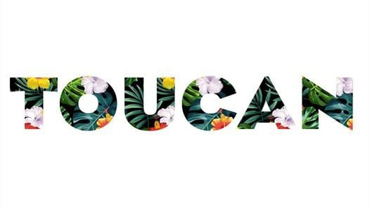 TOUCAN - [SOLD OUT]