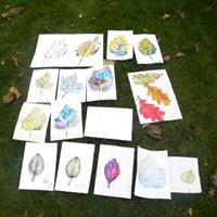 Exhibition Alternative Drawing Tour