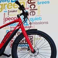 Bicycle Garage Indy