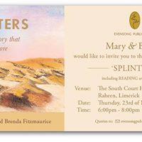 Splinters Launch Limerick