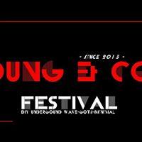Young and Cold Festival V es gibt nur noch Samstag Tickets