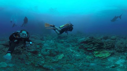 Amazing Anambas - Wreck and Reef expedition at Sea Dive