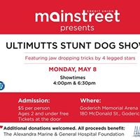 Ultimutts Stunt Dog Show Fundraising Event