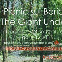 Picnic sui Berici con The Giant Undertow.
