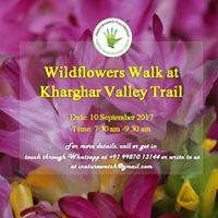 Wildflowers Walk at Kharghar Valley