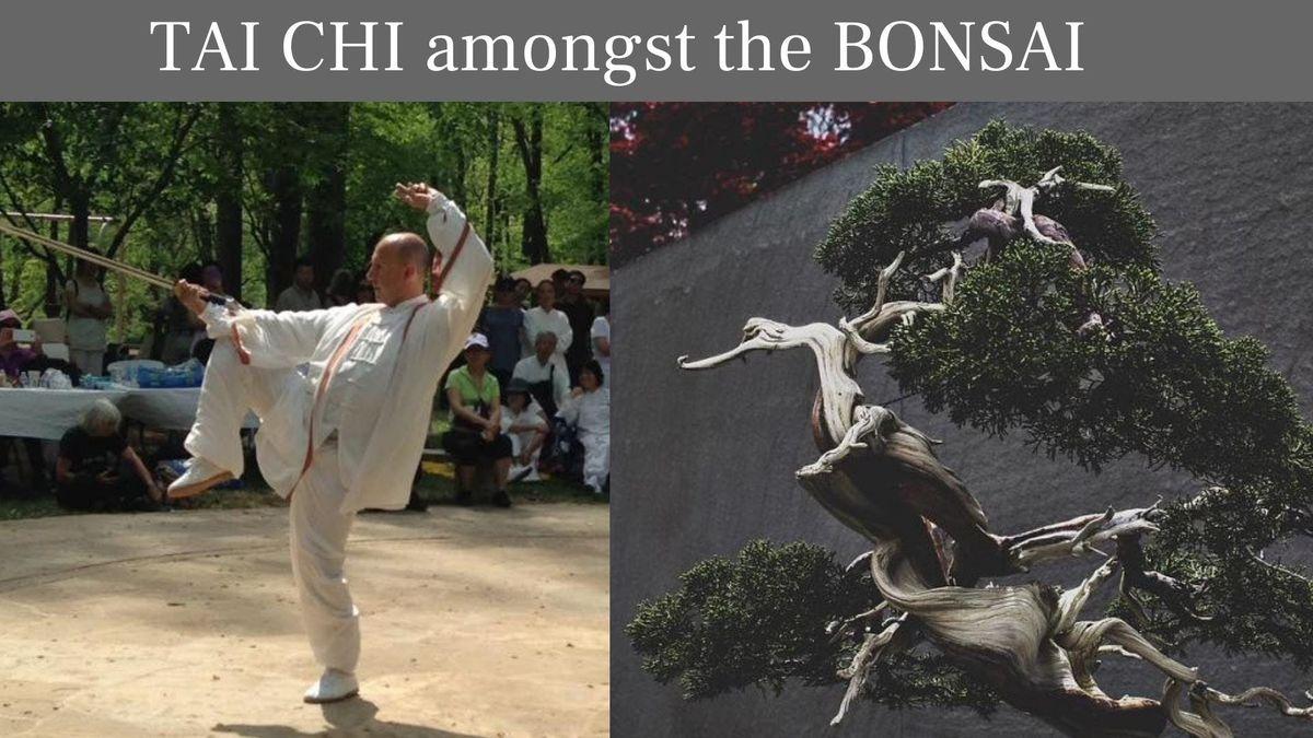 Tai Chi Amongst the Bonsai (Spring 2019)