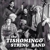 Tishomingo String Band LIVE at Falconettis