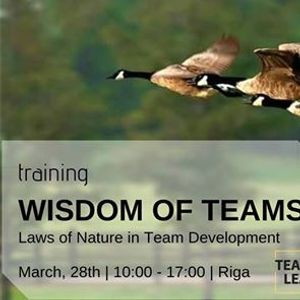 Wisdom of Teams Laws of Nature in Team Development