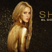 Shakira at the Medionlanum Forum Milan