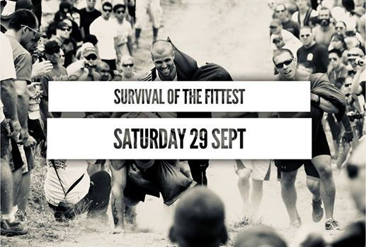 Survival Of The Fittest 2018