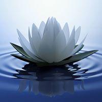 Primordial Sound Meditation Worskhop