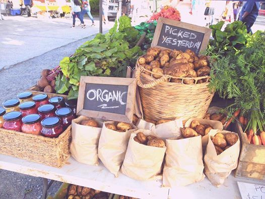 Captains Creek Organic Farm at Ballarat Farmers Market