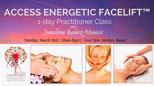 Access Energetic Facelift 1-Day Practitioner Class