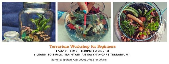 Learn Terrarium Make Open And Closed Terrarium At Kumarapuram