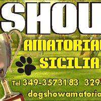 IV DOG SHOW KATANE