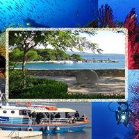 Week End a Isola di KrK ( HR )