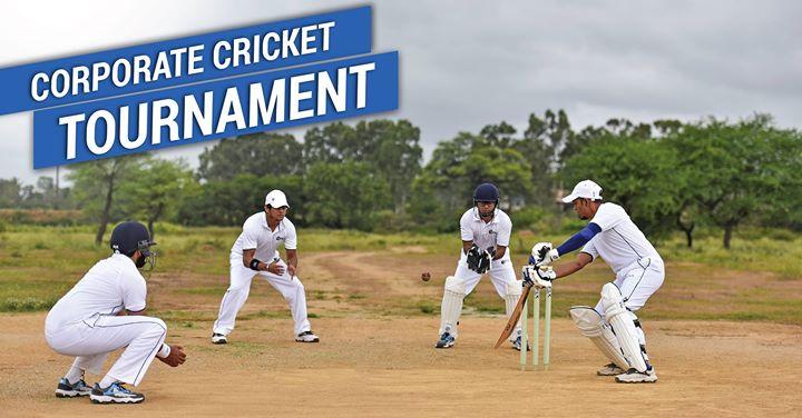 Corporate Cricket Tournament At Decathlon Raipur, Raipur