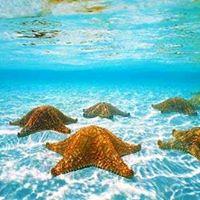 Cruise the Western Caribbean