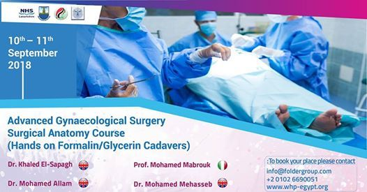 Advanced gynecological surgery/surgical anatomy Course at مستشفى ...