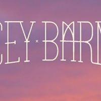 Tracey Barnett - Derby Boab Inn