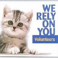 New Volunteer Meeting