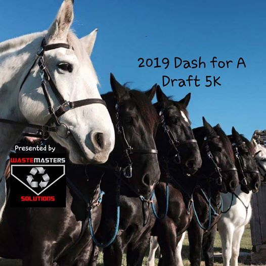 2019 Dash for a Draft 5K