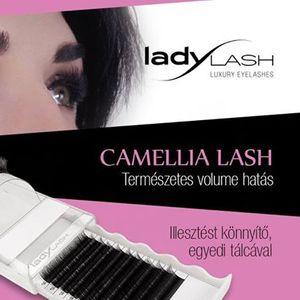 LadyLash Camellia