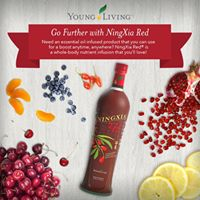 All About Ningxia