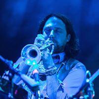 Billy Litz (Multi-Instrumentalist)
