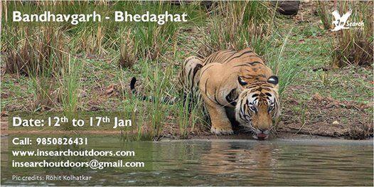 Bandhavgarh - Bhedaghat