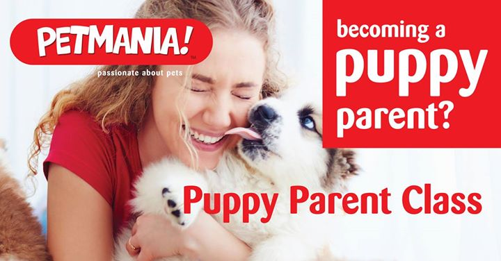 New Puppy Parent Class Santry