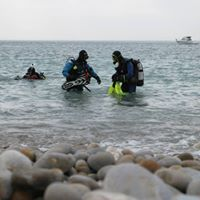 Open Water Diver Course- March