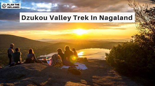 Dzukou Valley Trek In Nagaland  Plan The Unplanned