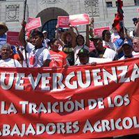 Farmworker Fair Labor Human Rights Hearing