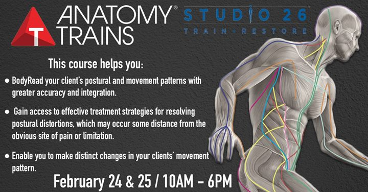 Anatomy Trains for Movement Professionals