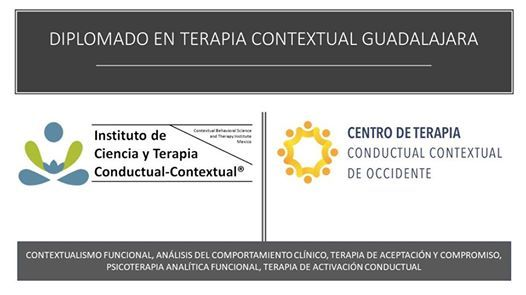 Diplomado En Terapia Contextual En Guadalajara At Instituto