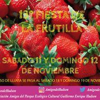 13 Fiesta De La Frutilla