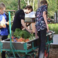 Naturvidenskabsfestival for 5-9 klasser