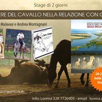 Stage SEE Benessere del Cavallo - Isola della Cona