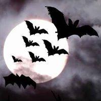 Biting Bats - Die Clubkeller Halloweenparty