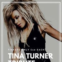 Tina Turner Tribute  Bupsi from x factor 10 each