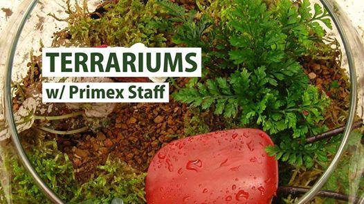 Terrarium Workshop at Primex Garden Center, Glenside