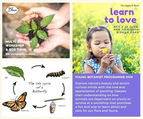 Young Botanist Workshop