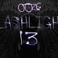 Flashlight 13