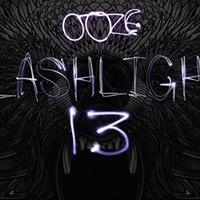Flashlight 13