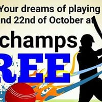 Come And Play Cricket Free