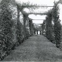 The Rose Gardens of Roger Williams Park