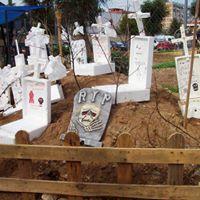El cementerio del caimn