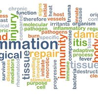 Reducing Inflammation Through Nutrition